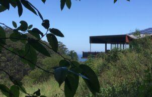 Korora Coastal Forest House