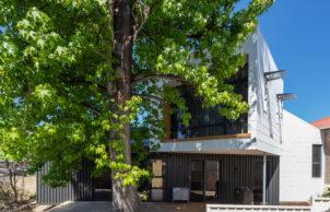 Suburban Treehouse