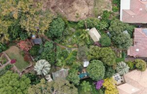 Moss House Edible Garden
